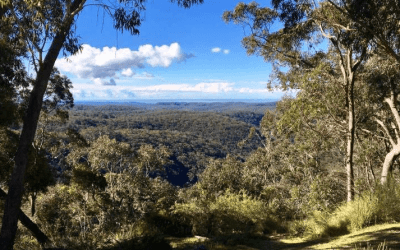The Blue Mountains as a Healing Ground